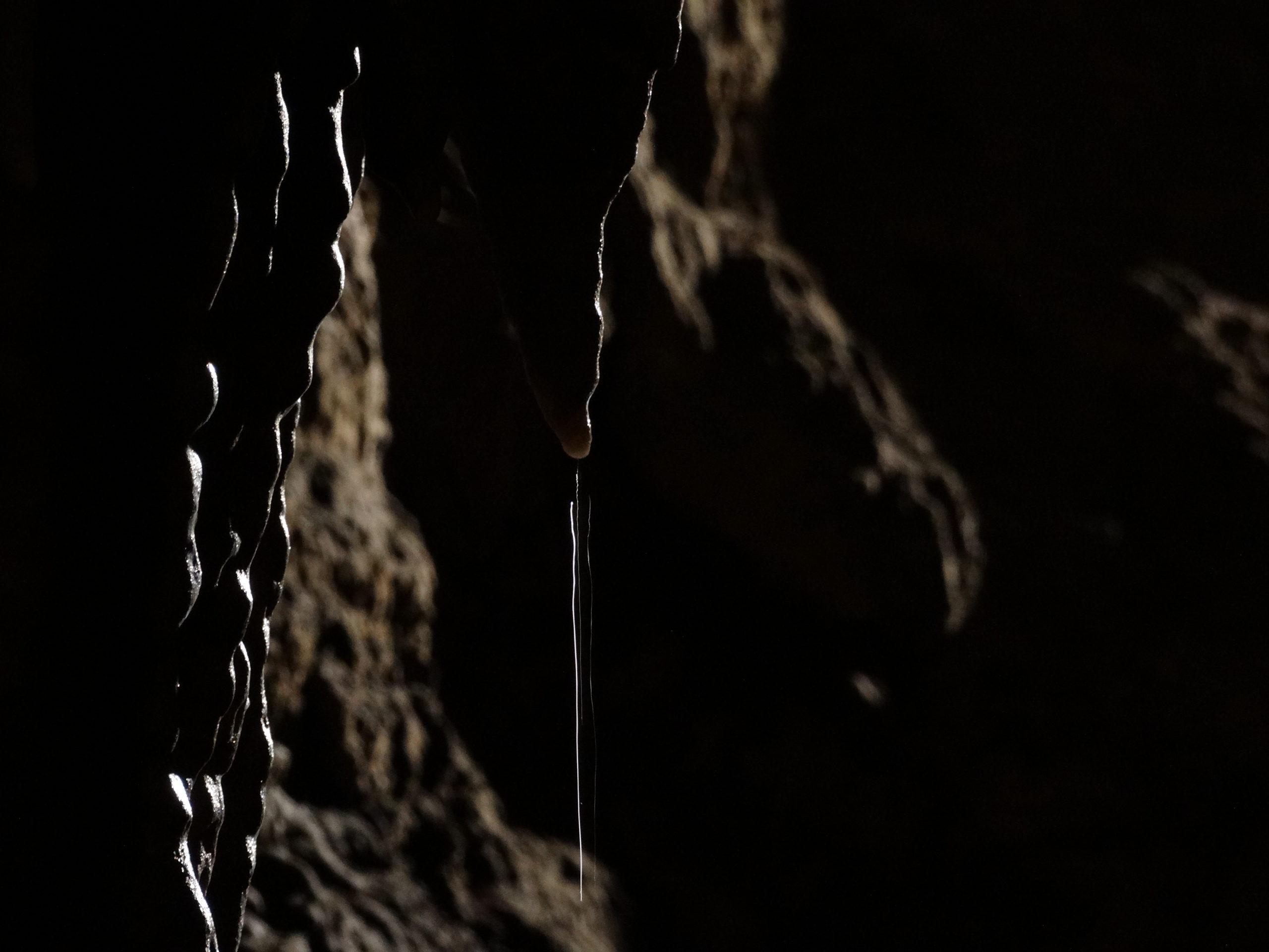 Grotte de Comblain - Détail d'un stalagtite ©Deplancke Michael